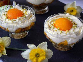 desert-la-pahar-cu-piersici-2-1
