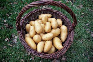 Chiftele de post - cos cu cartofi, unul din ingredientele necesare pentru a face chiftele de post